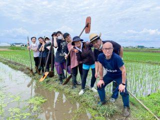 """米作りを初めて10年、地元に根付く""""田んぼオーナー制度"""""""